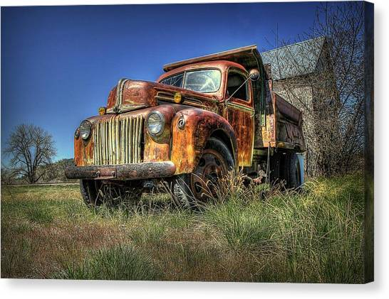 Rusty Reed Canvas Print