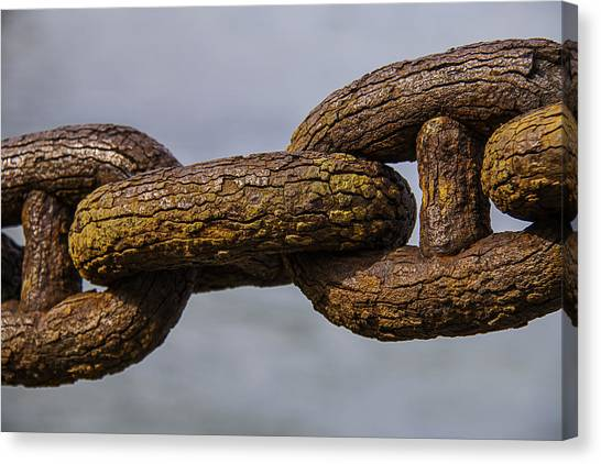 Chain Link Canvas Print - Rusty Sea Shore Chain by Garry Gay
