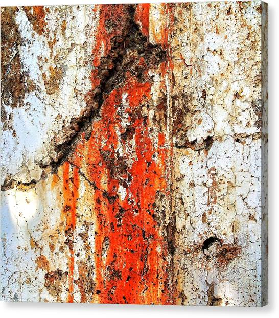 Old Age Canvas Print - Rusty Wound by Rene Constantin