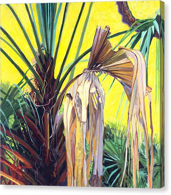 Sabal Canvas Print