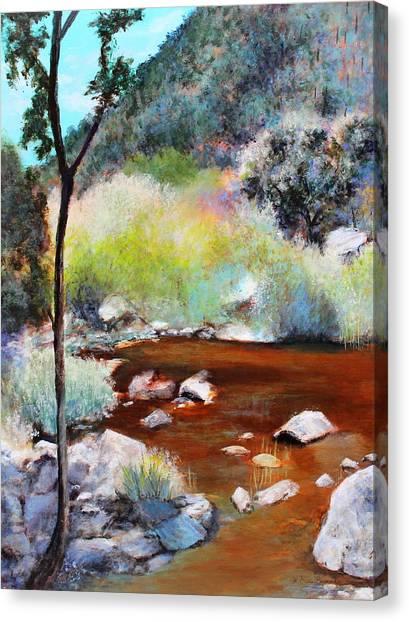 Sabino Canyon Scenes 2 Canvas Print