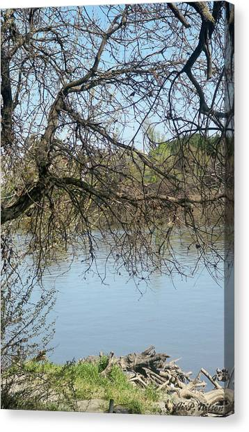 Sacramento River Canvas Print