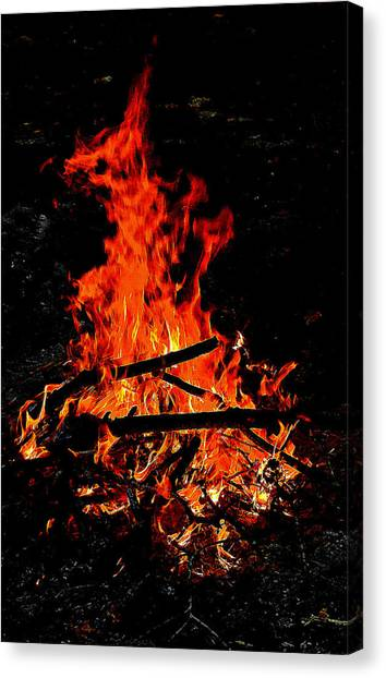 Sacred Fire Canvas Print by David  Brown