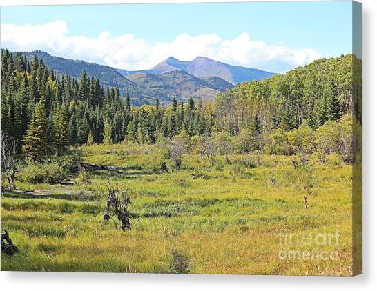 Canvas Print featuring the photograph Saddle Mountain by Ann E Robson