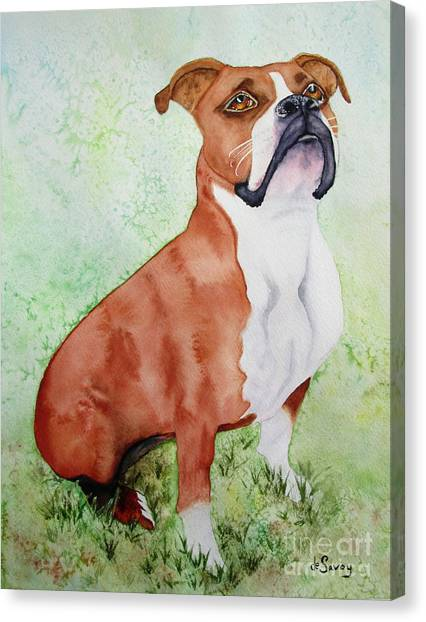 Canvas Print featuring the painting Sadie by Diane DeSavoy