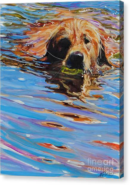 Golden Retriever Canvas Print - Sadie Has A Ball by Molly Poole