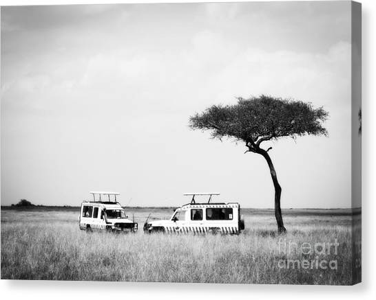 Safari Dream Canvas Print