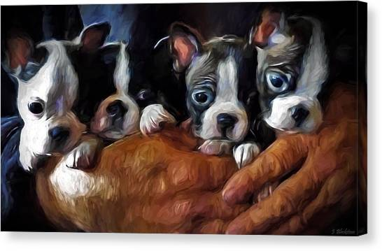 Safe In The Arms Of Love - Puppy Art Canvas Print