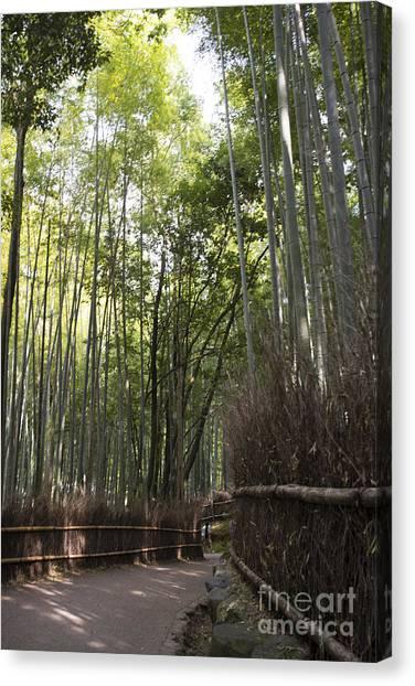 Sagano Bamboo Forest Canvas Print - Sagano -- Bamboo Forest Of Arashiyama by David Bearden