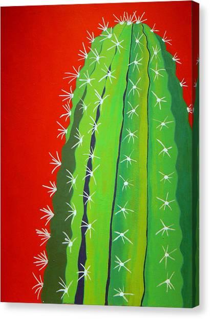 Saguaro Cactus Art Fine Art America