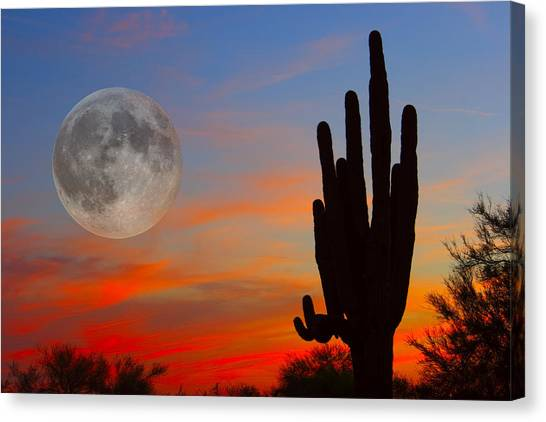 Desert Sunsets Canvas Print - Saguaro Full Moon Sunset by James BO  Insogna
