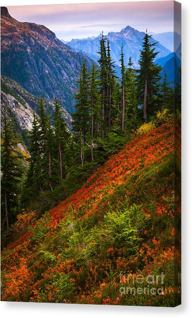 Autumn Scene Canvas Print - Sahale Arm by Inge Johnsson