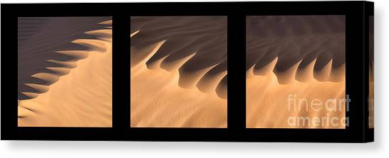 Sahara Desert Canvas Print - Sahara Triptych by Delphimages Photo Creations