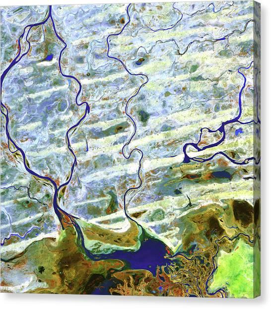 Delta Canvas Print - Saharan Desert Rivers by Nasa