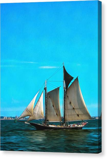 Sailboat In The Bay Canvas Print