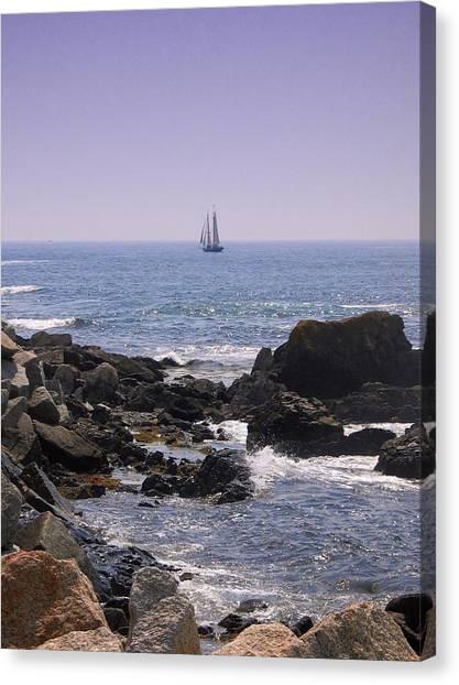 Sailboat - Maine Canvas Print