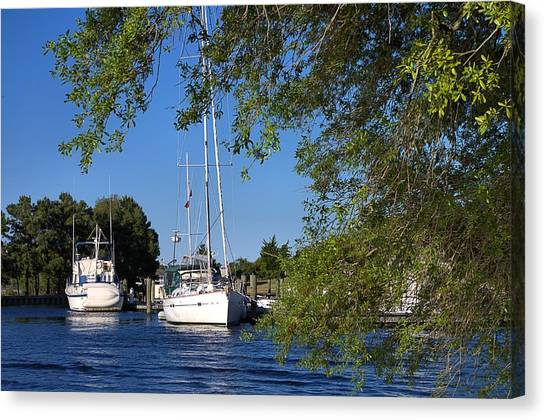 Sailboat Through Trees Canvas Print
