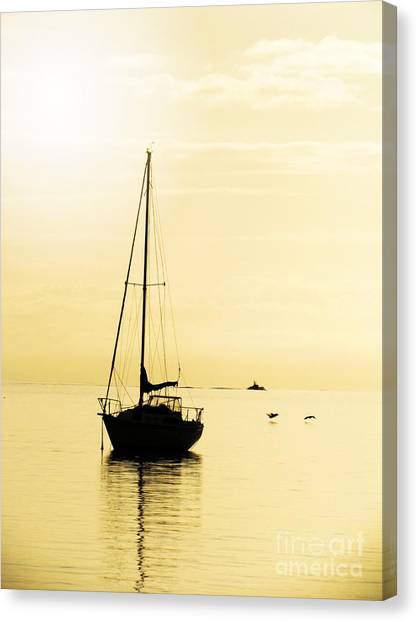 Sailboat With Sunglow Canvas Print