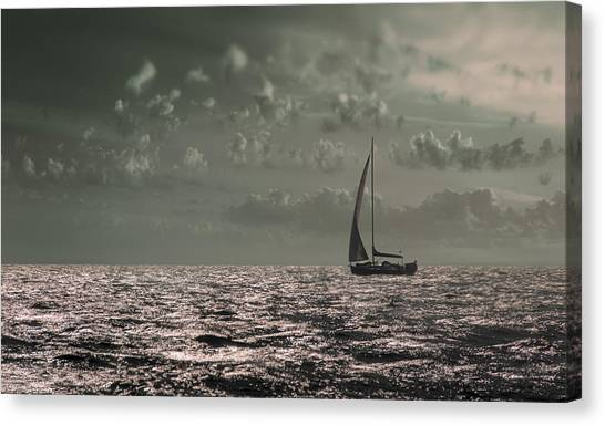 Sailing Canvas Print by Akos Kozari