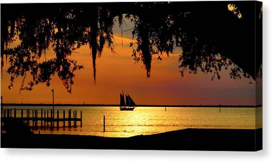 Sailing Destin Canvas Print