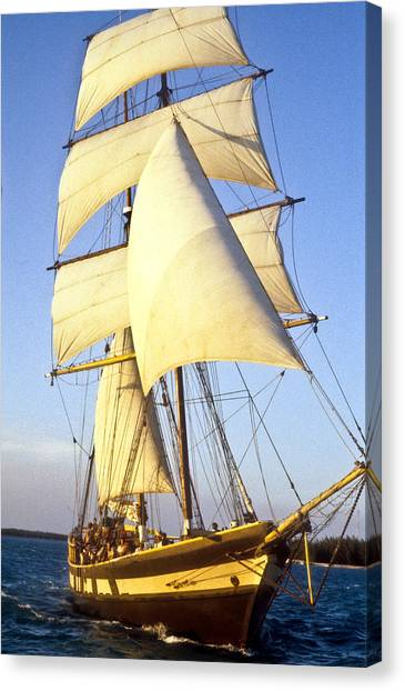 Sailing Ship Carribean Canvas Print