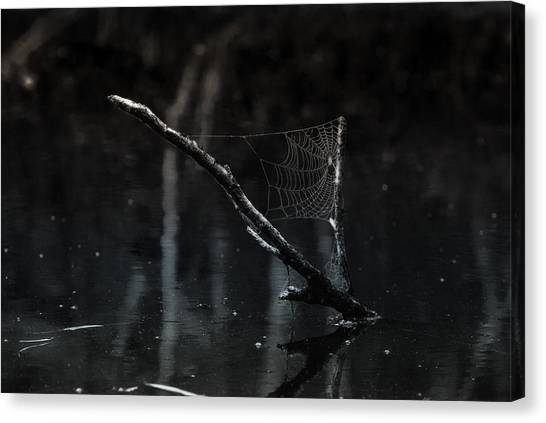 Spider Web Canvas Print - Sailing by Susan Capuano