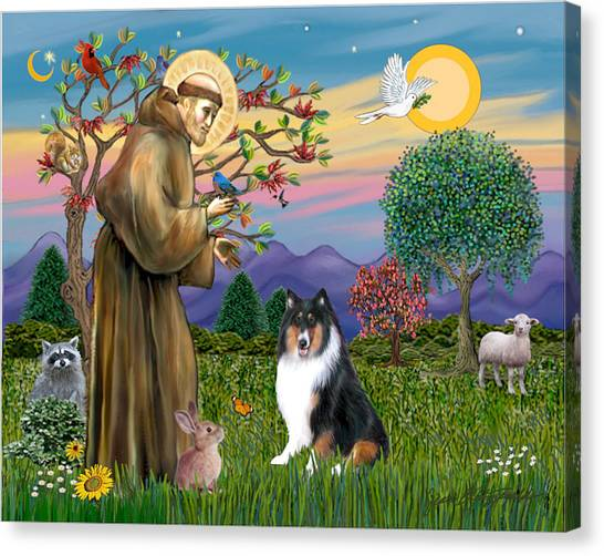 Saint Francis Blesses A Tri Color Collie Canvas Print