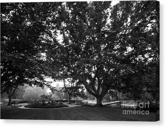 Saint Mary's College Landscape Canvas Print by University Icons