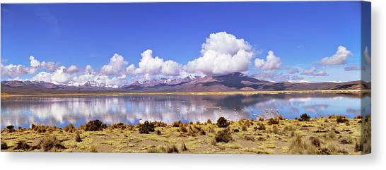 Andes Mountains Canvas Print - Salar De Surire (app 4300m by Martin Zwick