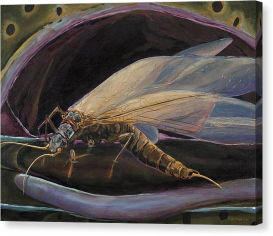 Salmon Fly Dinner Canvas Print