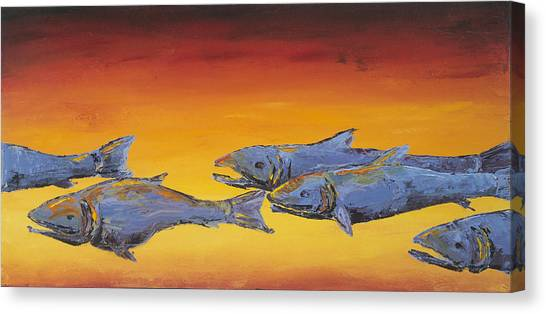 Salmon Sunrise Canvas Print