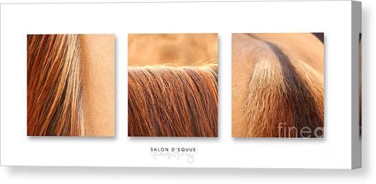 Salon D'equus Light Canvas Print
