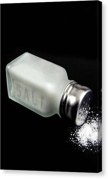 Condiments Canvas Print - Salt Cellar With Salt by Nico Tondini