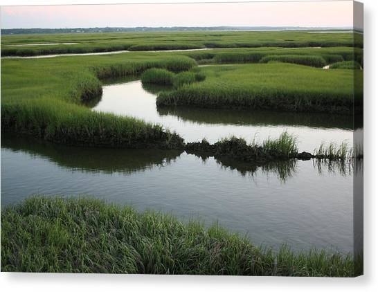 Salt Marsh Canvas Print