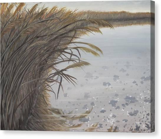 Salt Swamp #2  Canvas Print