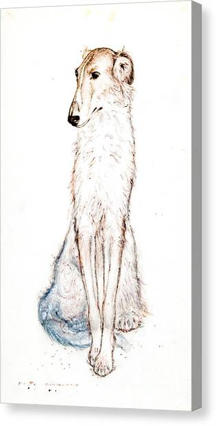 Saluki Canvas Print by Kurt Tessmann