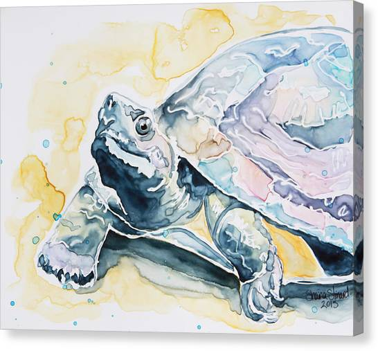 Watercolor Pet Portraits Canvas Print - Sammy The Turtle by Shaina Stinard