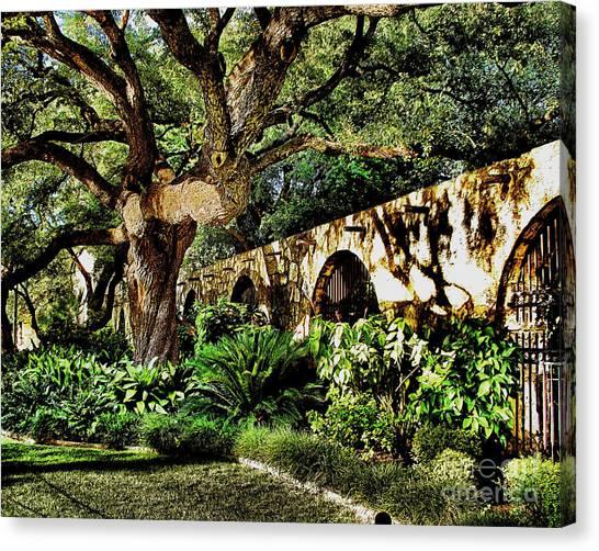San Antonio D Canvas Print