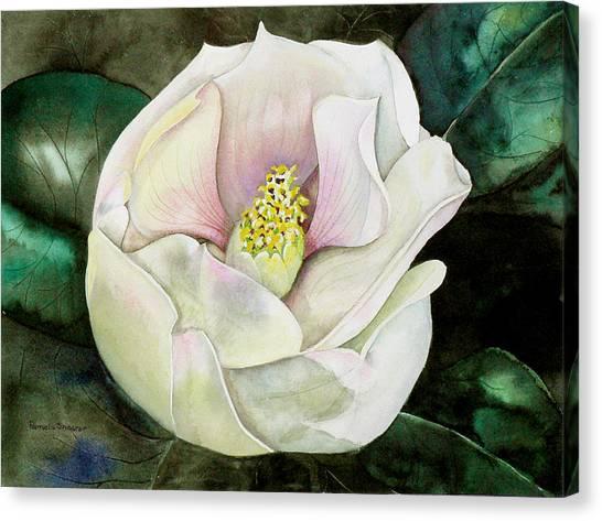 San Diego S Magnolia Canvas Print