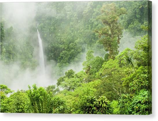 Tropical Rainforests Canvas Print - San Fernando Falls, Near Canchona Costa by Josh Miller Photography