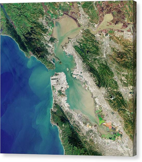 Satellite Canvas Print - San Francisco Bay by Jesse Allen And Robert Simmon/u.s. Geological Survey/nasa