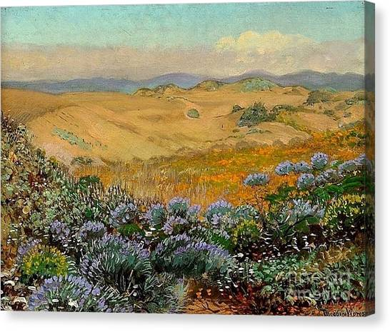 San Francisco Sand Dunes And Wildflowers Canvas Print by Roberto Prusso