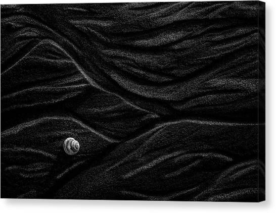 Black Sand Canvas Print - Sand And Shell by Stephen Clough