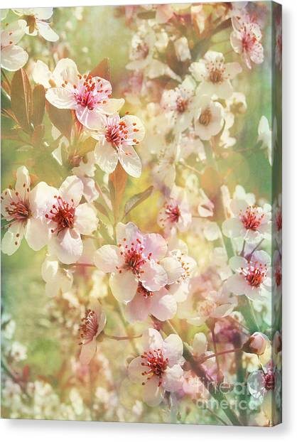 Sand Cherry Flourish Canvas Print
