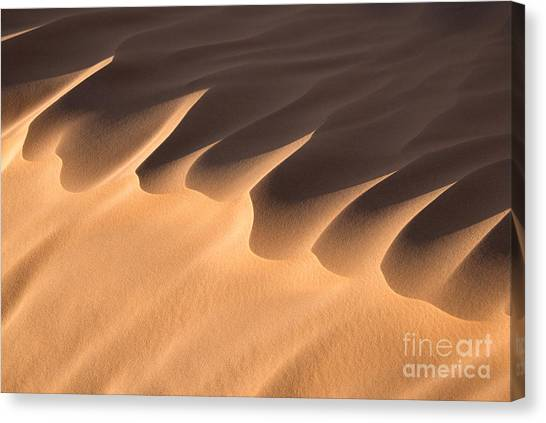 Sahara Desert Canvas Print - Sand Dune Detail by Delphimages Photo Creations