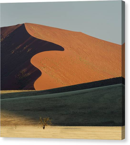 Namib Desert Canvas Print - Sand Dune, Sossusvlei, Namib Desert by Panoramic Images