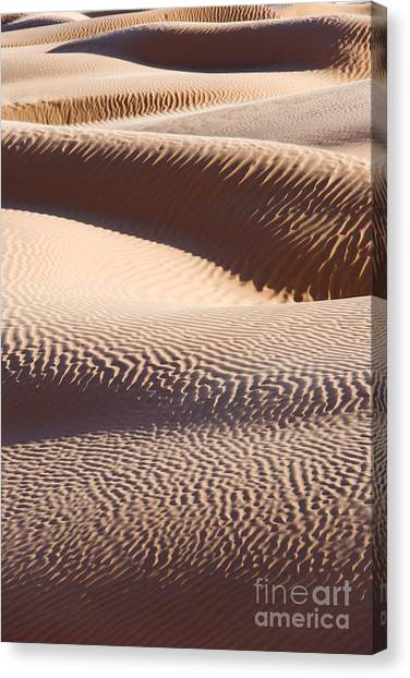 Sahara Desert Canvas Print - Sand Dunes 2 by Delphimages Photo Creations