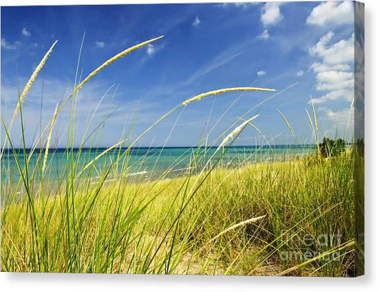 Peaceful Canvas Print - Sand Dunes At Beach by Elena Elisseeva