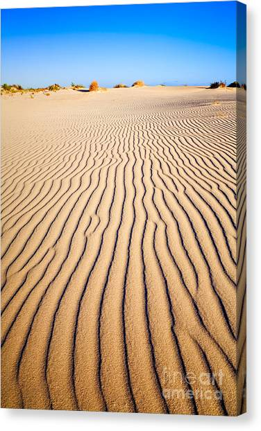 Sands Canvas Print - Sand Dunes At Eucla by Colin and Linda McKie