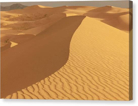 Gobi Canvas Print - Sand Dunes At Sunset by Tom Norring
